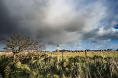 Typical white church in landscape at the island, Texel, Holland Stock Images