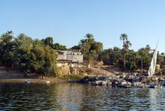 Typical white houses of a Nubian village surrounded by palm trees near Cairo Egypt and on the banks Royalty Free Stock Photography