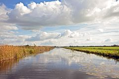 Typical wide dutch landscape in the Netherlands. Typical wide dutch landscape with meadows, water and cloudscapes Stock Photos