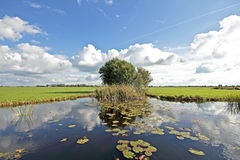 Typical wide dutch landscape in the Netherlands Royalty Free Stock Image