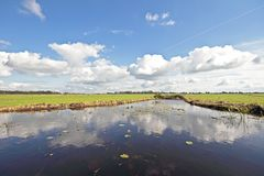 Typical wide dutch landscape in the Netherlands Royalty Free Stock Images