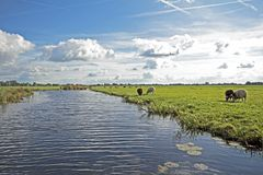 Typical wide dutch landscape in the Netherlands Royalty Free Stock Photography