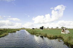 Typical wide dutch landscape Royalty Free Stock Images