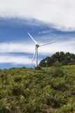 Typical windmill or aerogenerator of aeolian energy. Royalty Free Stock Images