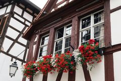 Typical window with flower of an old house in Strasbourg.  royalty free stock photography