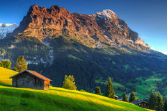 Typical wooden alpine chalets,Eiger North face,Grindelwald,Switzerland,Europe. Spectacular Swiss alpine landscape with green fields and famous Eiger peak,Bernese Stock Image
