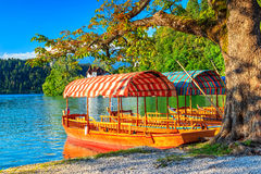 Typical wooden boats on the lake,Bled,Slovenia,Europe Stock Image