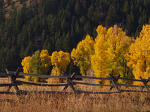 Typical Wooden Fence and Fall Colors Stock Photo