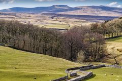Typical Yorkshire Dales scenery with rolling hills and a country Royalty Free Stock Images