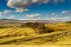 Typical Yorkshire Dales scenery with rolling hills and farmland. Stock Image