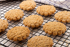 Typically scottish oatmeal biscuit on a cooling rack Stock Photo