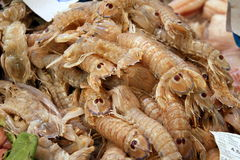 Typically Spanish Seafood for sale Royalty Free Stock Images