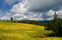 Typically sunny rural farmland scene Royalty Free Stock Photography