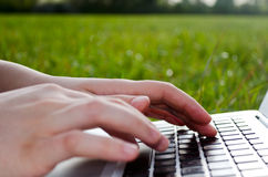 Working on laptop in nature. Hands typing on a laptop, surrounded by nature Royalty Free Stock Photo