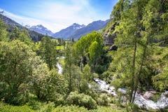 Typisch alpien landschap in de Lente Royalty-vrije Stock Foto's