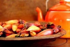 typisch Braziliaans pignonfruit Royalty-vrije Stock Fotografie