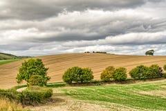 Typisch Engels platteland in de herfst, met een geploegd gebied royalty-vrije stock fotografie
