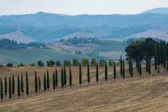 Typisch groen landschap in Toscanië, op de heuvels van Val D ` Orcia royalty-vrije stock afbeeldingen