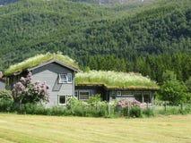 Typisch het landbouwbedrijfhuis van Noorwegen Royalty-vrije Stock Afbeeldingen