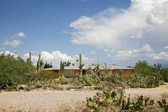 Typisch huis met een tuin in de woestijn. Tucson stock foto