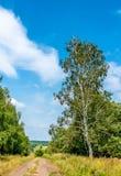 Typisch landelijk landschap van Kursk-gebied, Rusland stock foto