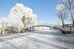 Typisch landelijk Nederlands landschap in de winter royalty-vrije stock fotografie