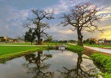 Typisch landschap van het dorp van Vietnam Royalty-vrije Stock Afbeelding