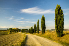 Typisch landschap van Toscanië royalty-vrije stock afbeeldingen