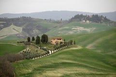 Typisch landschap van Toscani?, Itali? royalty-vrije stock afbeeldingen