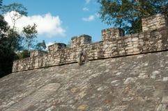 Typisch Mayan Art. Royalty-vrije Stock Fotografie