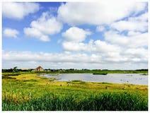 Typisch Nederlands landschap royalty-vrije stock afbeelding