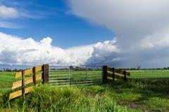Typisch Nederlands landschap in Alblasserdam, omheining, molen van Bleskensgraaf, Nederland Ruimte voor tekst stock fotografie