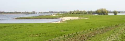 Typisch Nederlands rivierlandschap met bomen, alluviale gebieden, groen gras, water in de lente royalty-vrije stock foto's