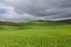 Typisch panorama in het gebied van Toscanië royalty-vrije stock afbeelding