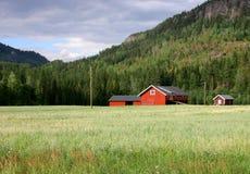 Typisch rood landbouwbedrijf Royalty-vrije Stock Afbeelding