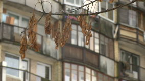 Typisch socialistisch flatgebouw in Vilnius, Litouwen Oost-Europa stock footage