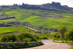 Typisch Toscaans landschap stock afbeeldingen