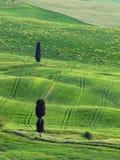 Typisch Toscanië lanscape Royalty-vrije Stock Afbeeldingen