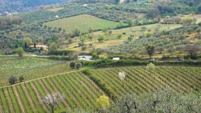 Typisch Tuscanian-landschap stock footage