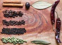 Typische Bestandteile f?r Pfefferk?rner eines garam masala Schwarzen, Muskatbl?te, Zimt, Nelken, getrocknete rote Paprikas und gr lizenzfreie stockfotografie
