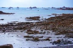 Typische Bretagne-Küste im Norden von Frankreich Stockfoto