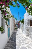 Typische cycladic steeg in het dorp van het eiland van Parikia Paros stock afbeelding