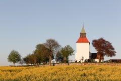 Typische dänische Kirche in der Landschaft mit einem Feld des Rapssamens Stockbild