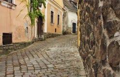 Typische europäische Gasse in Szentendre Ungarn stockfotografie