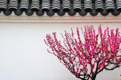 Typische Gebäude in der Südchina Lizenzfreie Stockfotografie