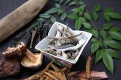 Typische getrocknete Nahrungsmittel für japanischen Suppenvorrat Lizenzfreie Stockfotos