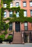Typische huizen in New York Royalty-vrije Stock Foto
