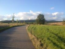 Typische Landschaft mit der Weise, den Bäumen und den Hügeln Lizenzfreie Stockbilder