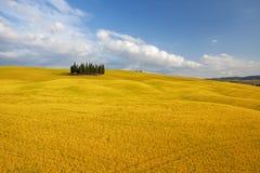 Typische Landschaft in Toskana, Italien Lizenzfreie Stockbilder