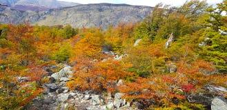 Typische Landschaft von Patagonia, Farben des Herbstlaubs lizenzfreie stockfotografie